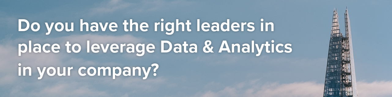 Data Analytics Leadership recruitment header